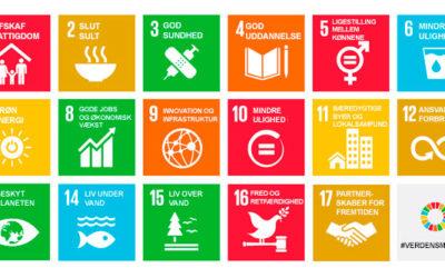 Bæredygtig ledelse – brug verdensmålene i din ledelse d. 1.4.2020